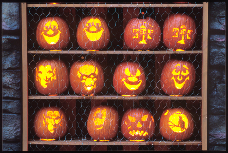 5 free Halloween events in Chicago