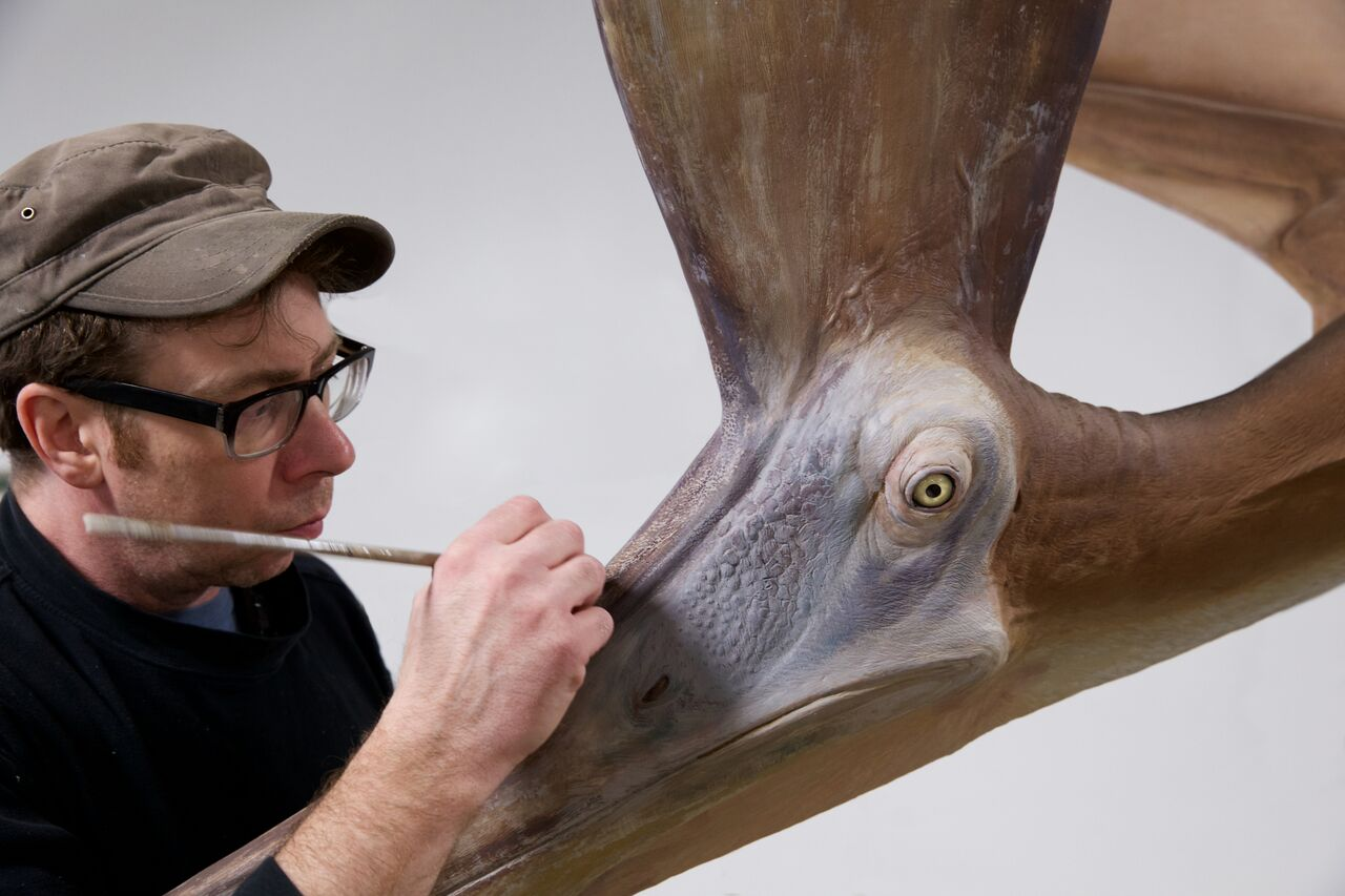 Pteranodon replica - Field Museum