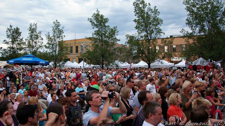 Crowd at Taste of Polonia festival