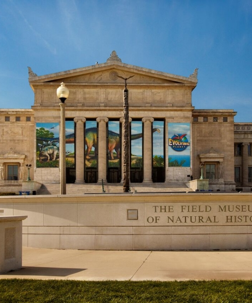 explore-natural-history-at-the-field-museum