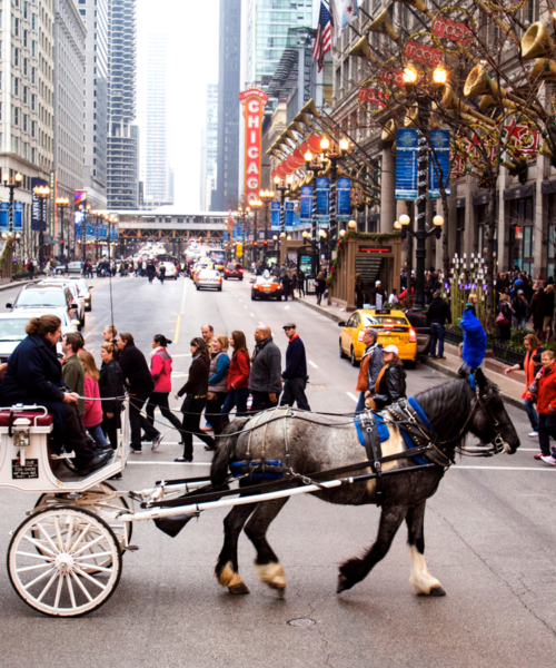 guide-to-holiday-shopping-in-chicago