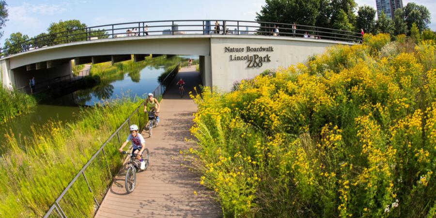 Lincoln Park Zoo Nature Boardwalk