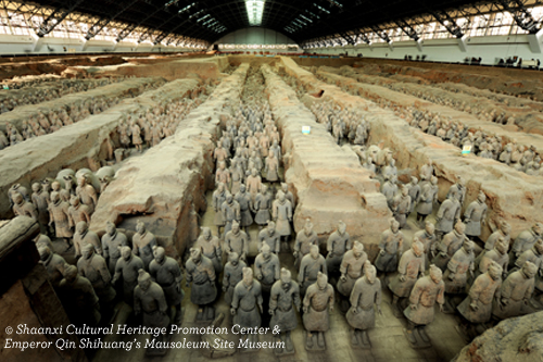 Terracotta Warriors Field Museum