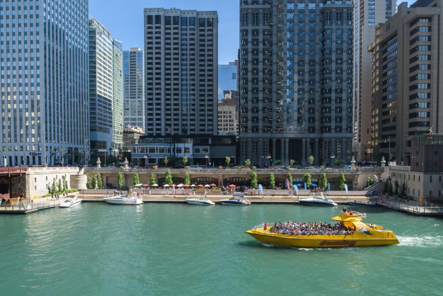 Seadog Boat Tour