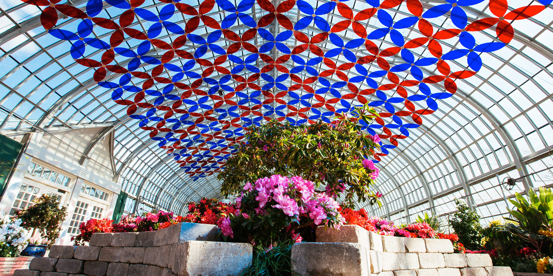 chicago conservatories