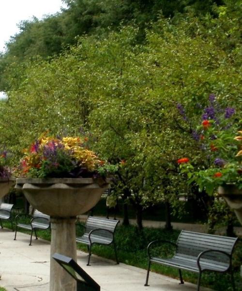 explore-chicagos-grant-park