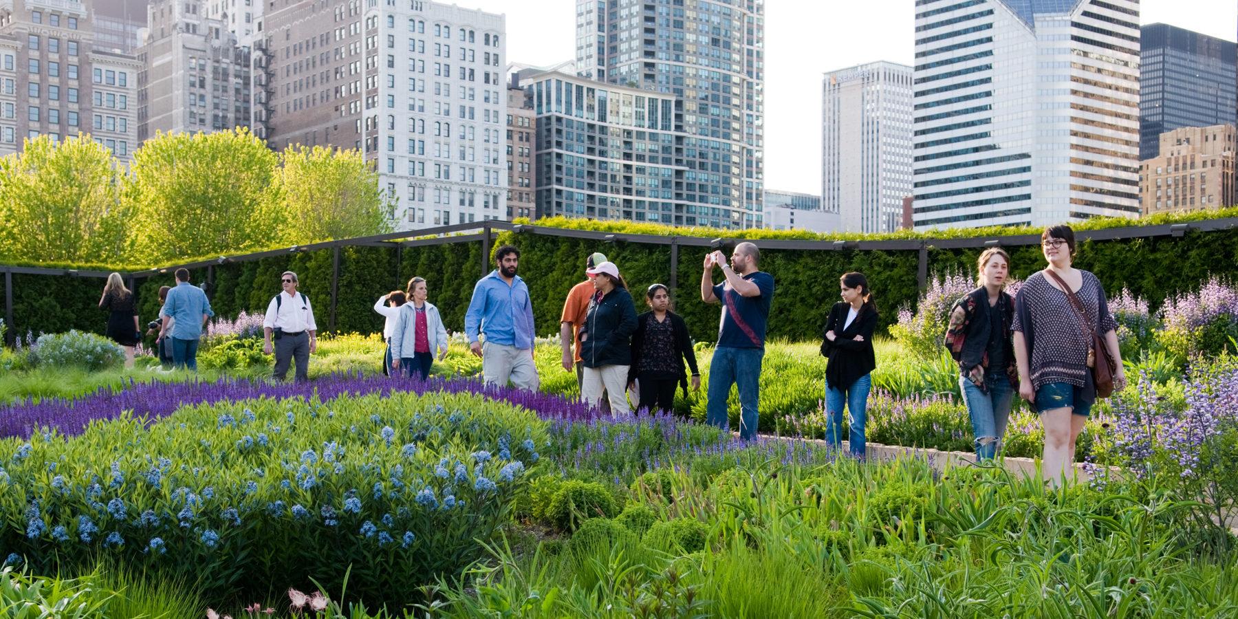 Garden tour in Chicago