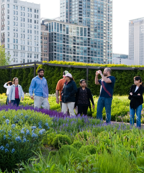 chicago-gardens-for-group-visits