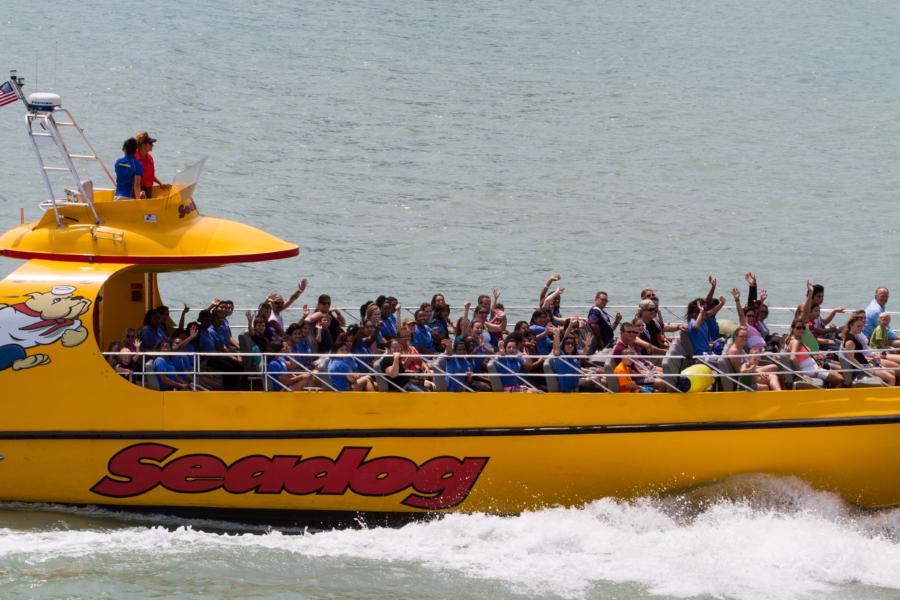Seadog Cruise