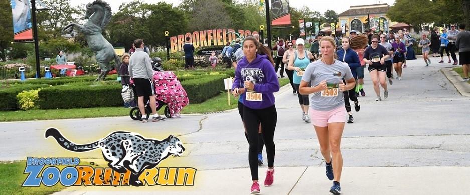Brookfield, IL Zoo Run Run promo