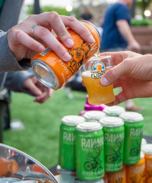 get-a-taste-of-chicagos-craft-beer-scene-at-friday-night-flights