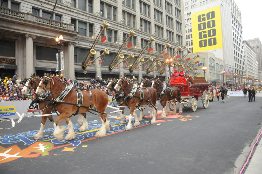 Chicago Thanksgiving Day Parade