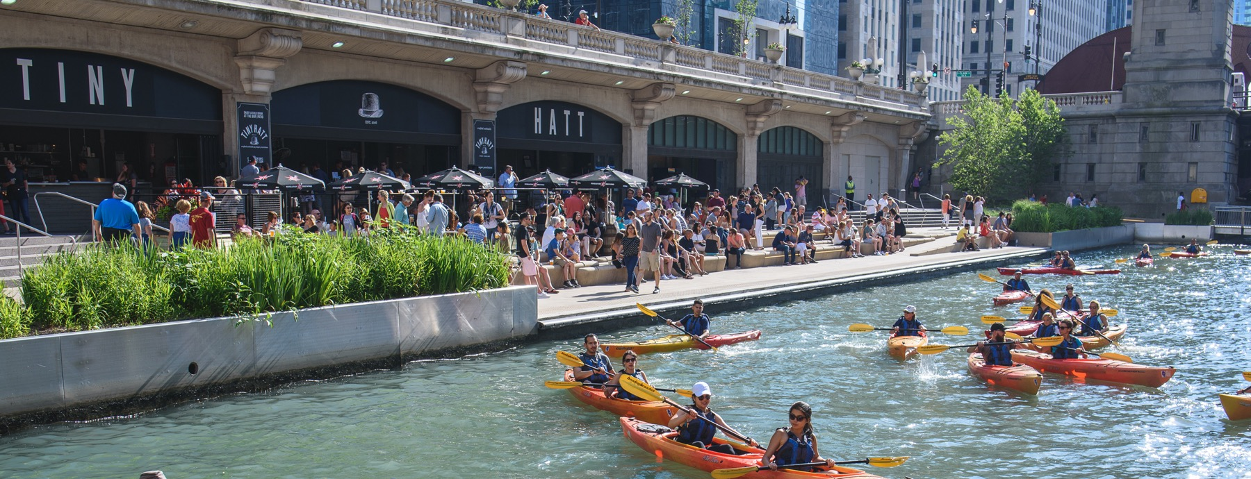 People kayaking in the river along side the Chicago riverwalk