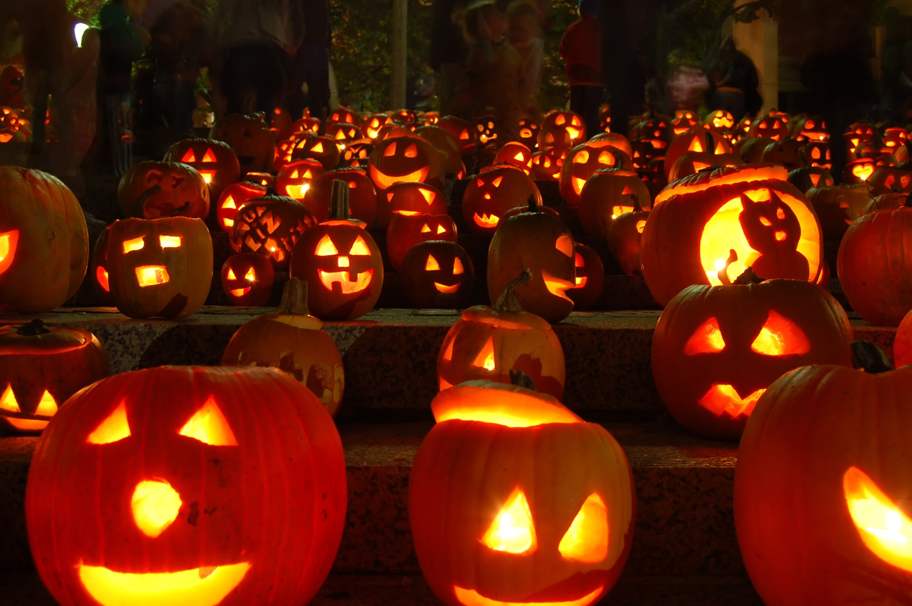 Chicago Il Halloween Events 2020 Halloween events in Chicago: Top things to do 2020 | Choose Chicago