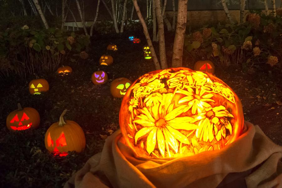 Night of 1,000 Pumpkins at Chicago Botanic Garden