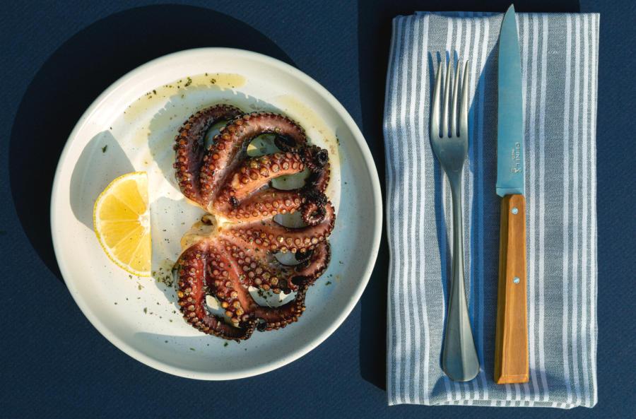 Octopus at Andros Taverna