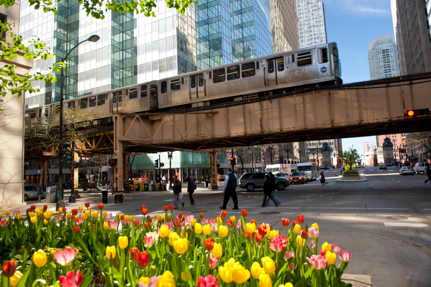 Chicago L in spring