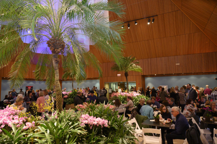 Chicago Botanic Garden - Evening with the Orchids 2019
