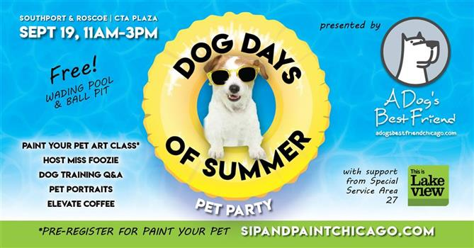 Dog Days of Summer Pet Party