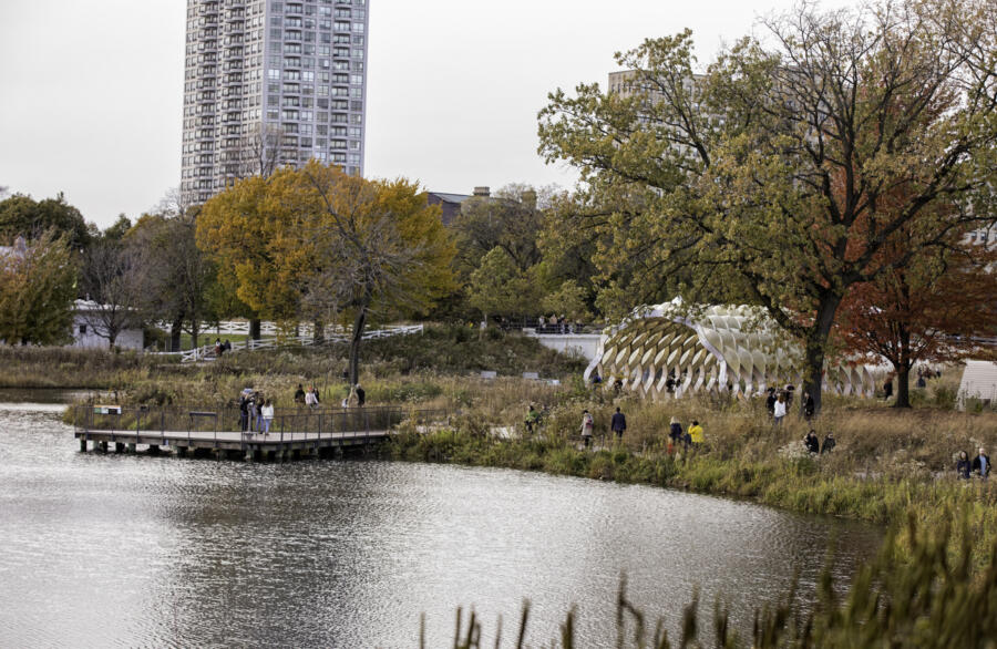 Lincoln Park in fall