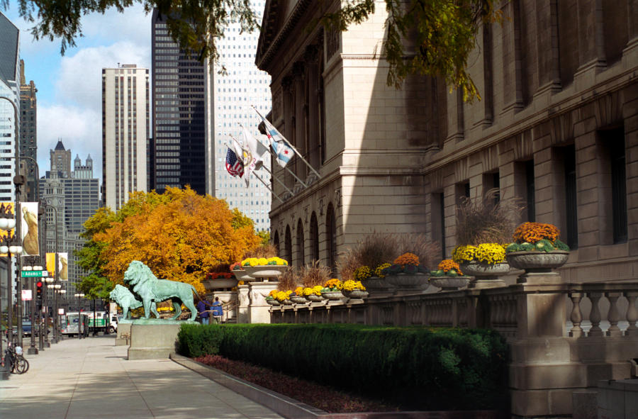 The exterior of the Art Institute in fall