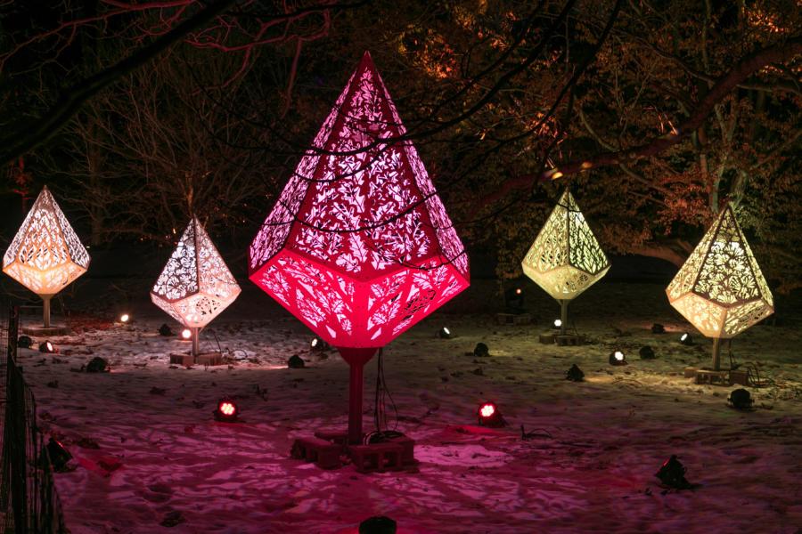 Morton Arboretum Illumination: Tree Lights Driving Experience