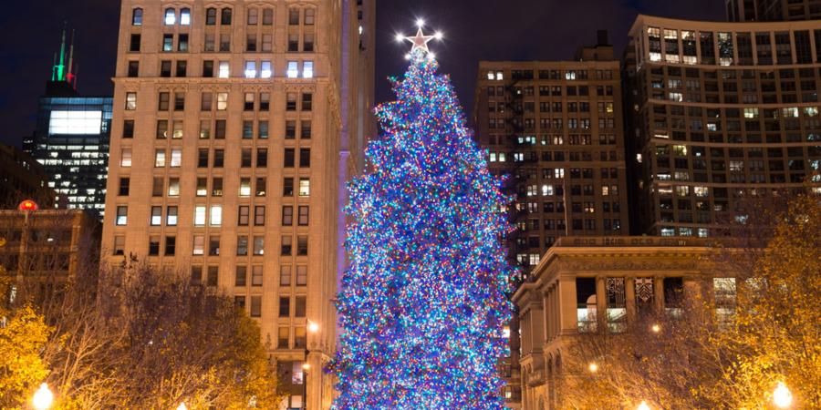 City of Chicago Christmas Tree