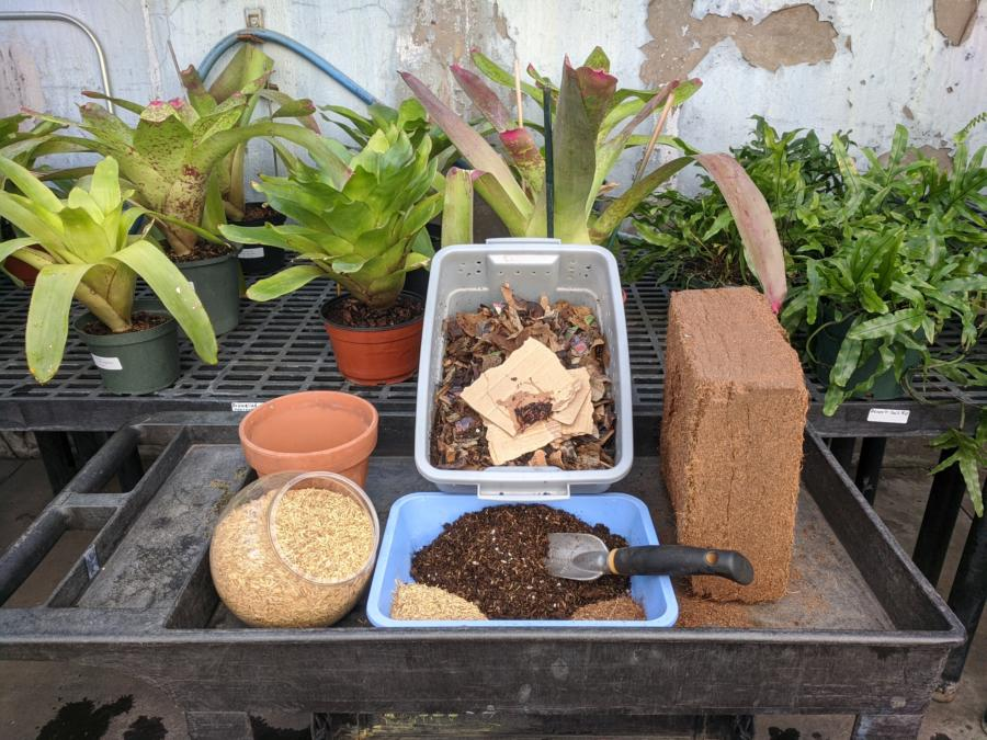 DIY Sustainable Seed Starting and Potting Mixes-Virtual Class