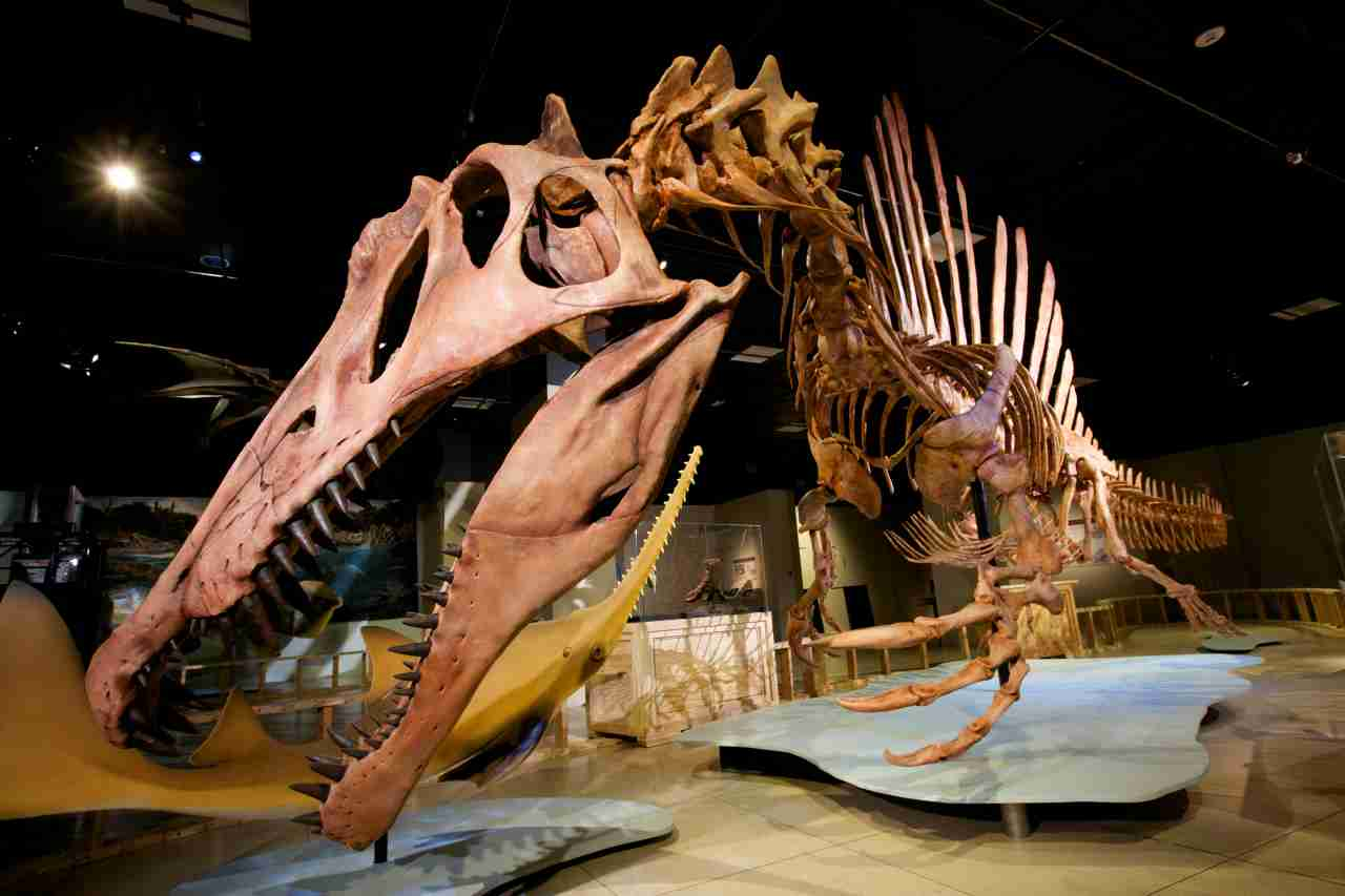 """Reimagining Dinosaurs – A """"National Geographic Live"""" Event"""