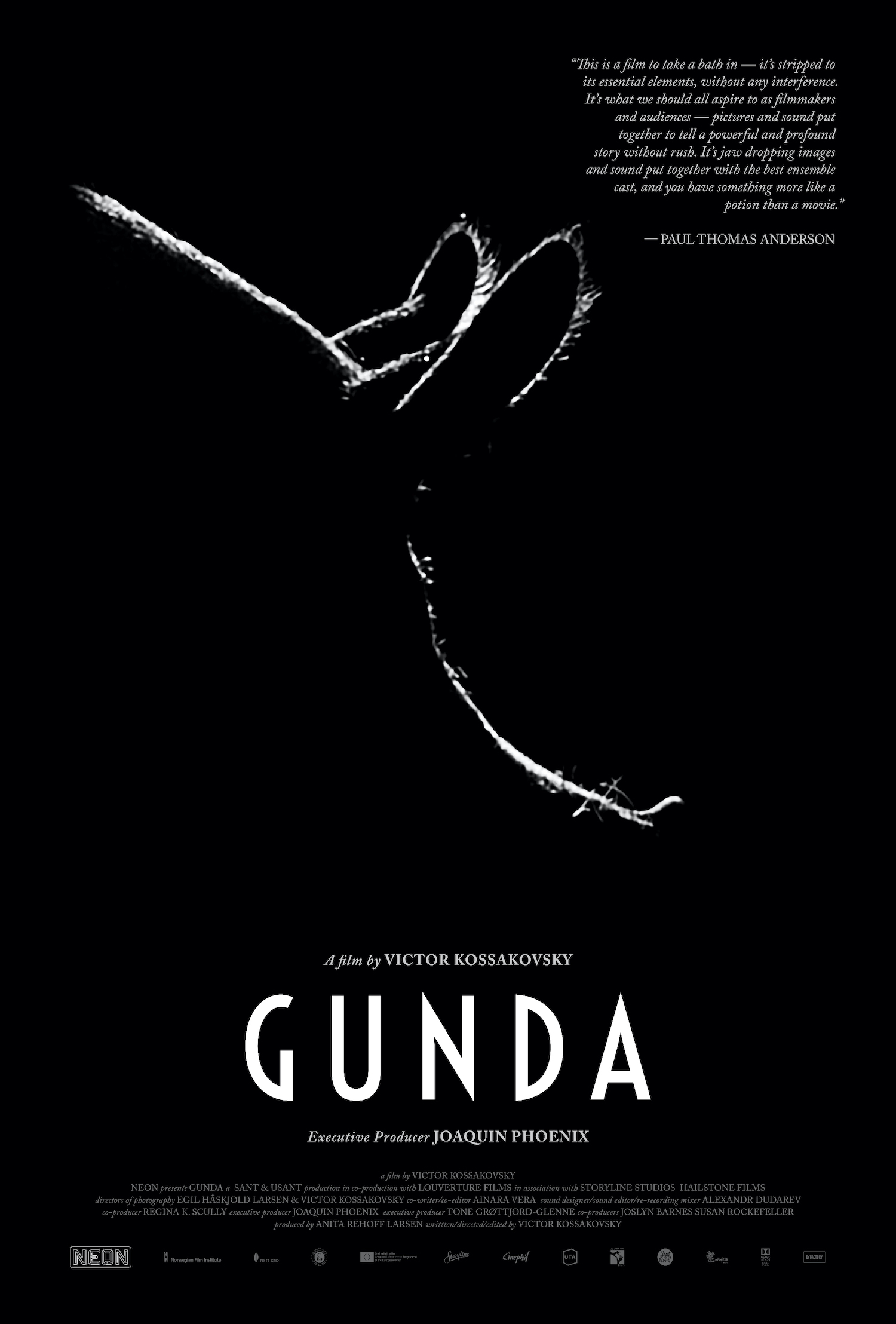 Gunda: A Virtual Conversation with the Filmmaker Victor Kossakovsky