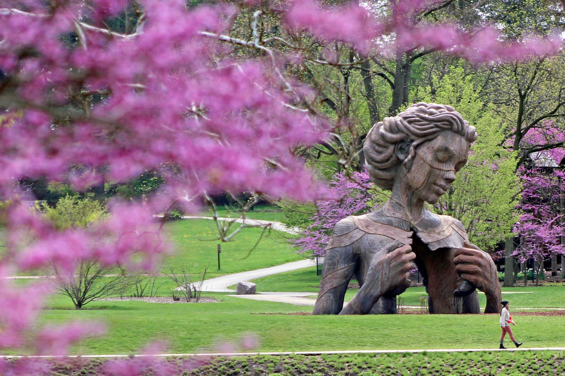 Human + Nature at Morton Arboretum
