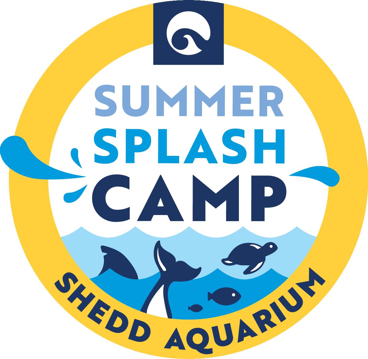 Camp Shedd: Summer Splash