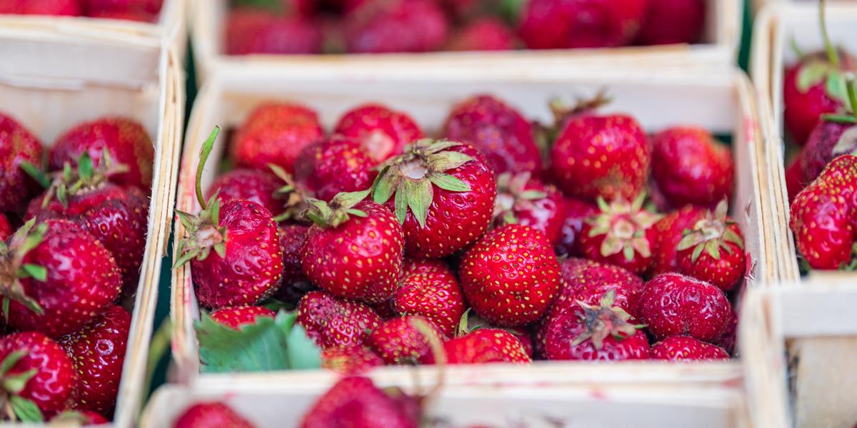 strawberries1200